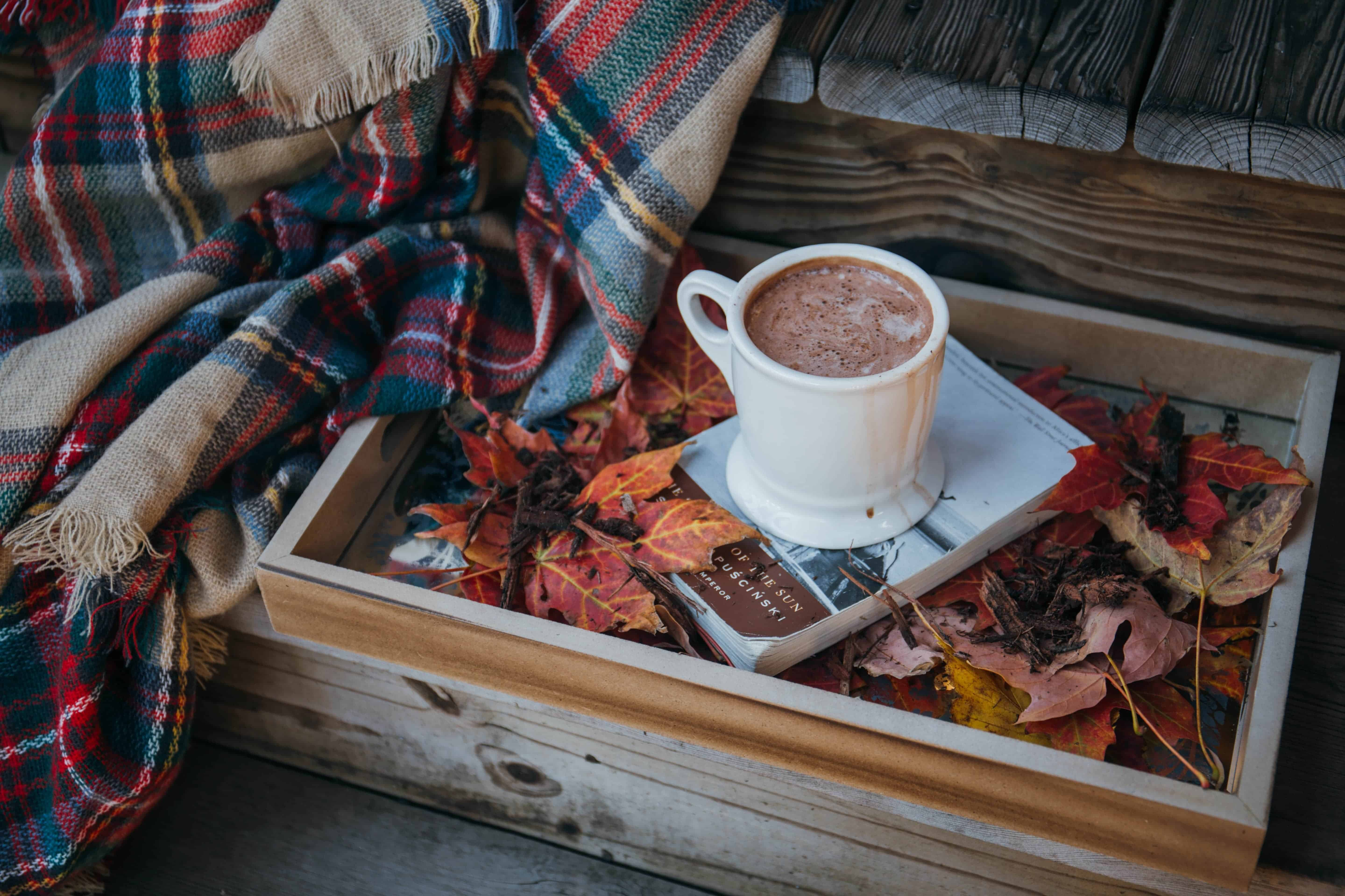 book and hot chocolate on tray with plaid throw